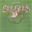 The Bee Gees - Main course