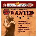 Assassin / B. Anthony / Bling Dawg / Bounty Killer / Burro Banton / Cobra / Elephant Man / Greg Hynz / Mr Easy / Red Square / Sizzla / Spragga Benz / T.o.k. / Wanted / Wayne Marshall - Riddim driven: wanted
