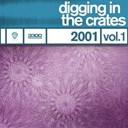 Book Of Love / Filter / Mephisto Odyssey / New Order / Orgy / Snake River Conspiracy - Digging in the crates: 2001 vol. 1