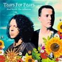 Tears For Fears - Mad world: the collection