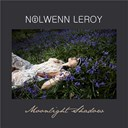 Nolwenn Leroy - Moonlight shadow