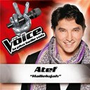 Atef - Hallelujah - the voice : la plus belle voix