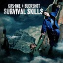 Buckshot / Krs One - Survival skills