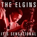 The Elgins - It's sensational
