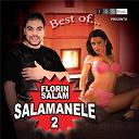 Florin Salam - Salamanele 2