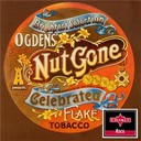 The Small Faces - Ogden's nut gone flake