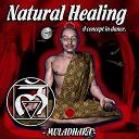 Crystal Sound / Dj Exanimo / Krama / M-Sphere / Mad Contrabender / Noktamid / Psytrain, Mad Contrabender / Tulk / Zion - Natural healing vol.2