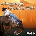 Chet Atkins / Cowboy Copas / Don Gibson / Ernest Tubb / Ferlin Husky / Gene Autry / Hank Snow / Hank Thompson / Hank Williams / Hardrock Gunter / Jim Reeves / Lefty Frizzell / Merle Travis / Patsy Montana / Ray Price / Tex Williams - Country & western, vol. 6