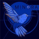 Minora - The plunge