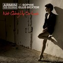Armin Van Buuren - Not giving up on love (feat. sophie ellis bextor)
