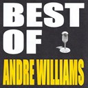 Andre Williams - Best of andre williams