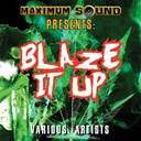 Alborosie / B. Anthony / Christopher Martin / Da' Ville / Danny English / Fantan Mojah / Jah Mason / Lukie D / Mr Vegas / Mykal Rose / Red Rat / Sizzla / Starkey Banton / Tony Curtis / Warrior King / Wayne Marshall - Blaze it up