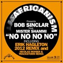 Africanism / Bob Sinclar - No no no no (feat. mr shammi)