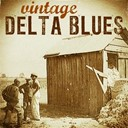 Big Joe Williams / Bo Carter / Bukka White / Charlie Mc Coy / Howlin' Wolf / Ishman Bracey / Jackie Brenston / James Elmore / James Skip / John Hurt / John Lee Hooker / Leadbelly / Mississippi Fred Mc Dowell / Muddy Waters / Robert Johnson / Sunnyland Slim - Vintage delta blues