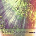Terry Oldfield - Ambient soundscapes, vol.1