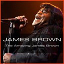 James Brown - James brown: the amazing james brown