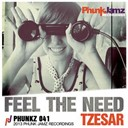 Tzesar - Feel the need