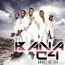 Bana C4 - Arret de jeu