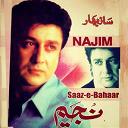Najim - Saaz-e-bahaar