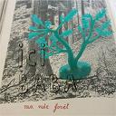 Ici Baba - Ma mie forêt