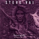 Steve Vai - Various artists : archives, vol. 4