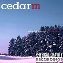 Cedar M - Stupid winter (remixes)