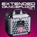 Bumpers / Candy / Chic Flowerz / Dj Raxx / F Physical / Shot / Tom Slake / Venus Kaly - Extended dancefloor, vol. 1