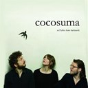 Cocosuma - we'll drive home backwards