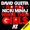 David Guetta - Where them girls at (instrumental) (instrumental)