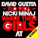 David Guetta - Where them girls at (instrumental)