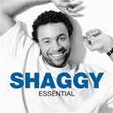 Shaggy - Essential
