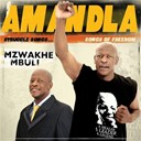 Mzwakhe Mbuli - Amandla
