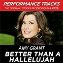 Amy Grant - Better than a hallelujah (performance tracks) - ep