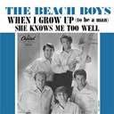 The Beach Boys - When i grow up (to be a man)