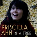 Priscilla Ahn - In a tree