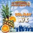 The Professional Dj - Holiday mix