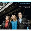 """Franz Schubert - Fantaisie d.934. trio op.99 & 100, sonate d.821 """"arpeggione"""""""
