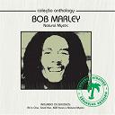 Bob Marley - Coleção anthology - natural mystic